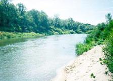 приволжская лесостепь