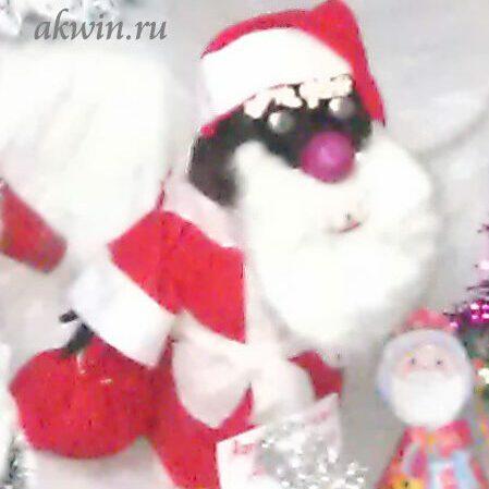 Дед Мороз из валенка