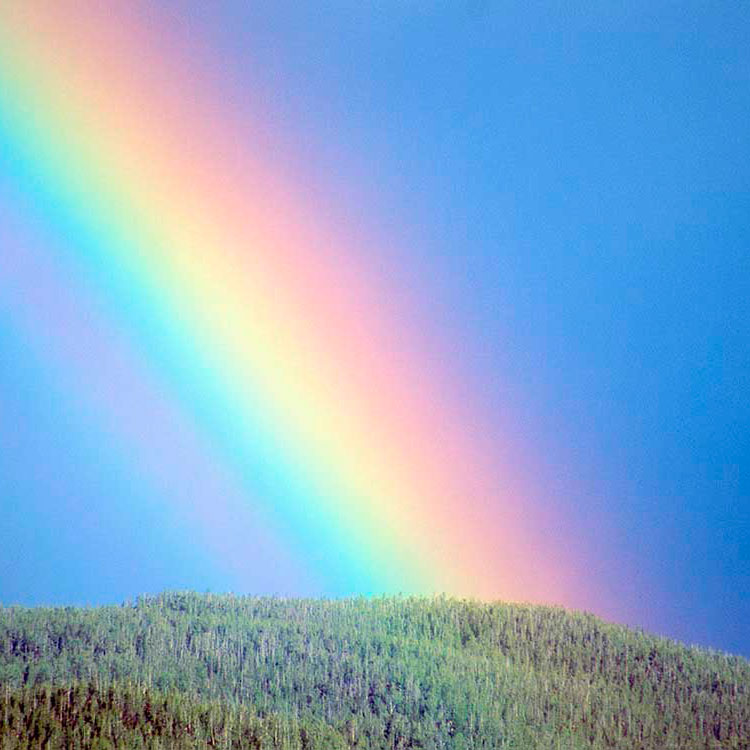 Цвета радуги зорь и закатов Доклад по физике 8 класс